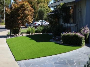 Artificial Grass Carpet Daleville, Indiana Home And Garden, Front Yard Ideas artificial grass