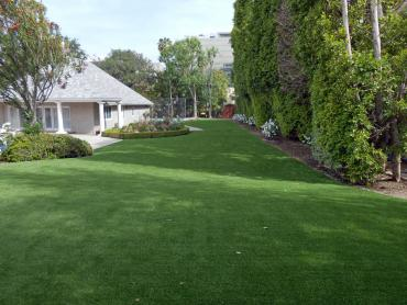 Artificial Grass Photos: Artificial Lawn Ferdinand, Indiana Roof Top, Small Front Yard Landscaping