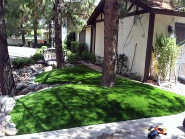 Artificial Grass Photos: Artificial Lawn Gosport, Indiana, Front Yard Design