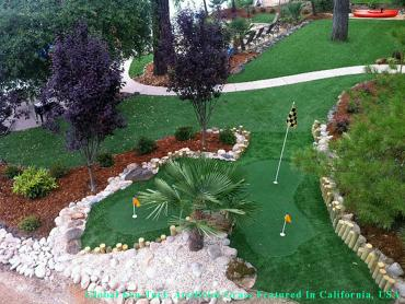 Artificial Lawn Indianapolis, Indiana Putting Green Grass, Backyard Landscape Ideas artificial grass