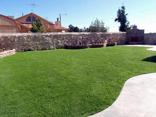 Artificial Grass Photos: Artificial Turf Cost Argos, Indiana Design Ideas, Backyard Designs