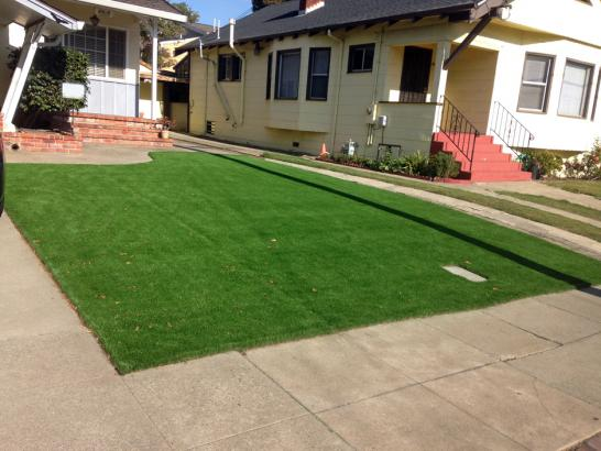 Artificial Grass Photos: Artificial Turf Cost Berne, Indiana Landscape Design, Front Yard