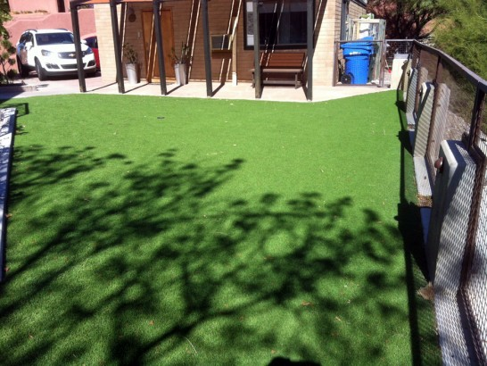 Artificial Grass Photos: Artificial Turf Cost Cordry Sweetwater Lakes, Indiana Landscape Ideas, Backyard Design