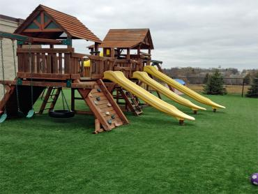 Artificial Turf Cost McCordsville, Indiana Indoor Playground, Commercial Landscape artificial grass