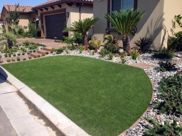Artificial Grass Photos: Artificial Turf Cost Middlebury, Indiana Landscaping Business, Front Yard Landscape Ideas