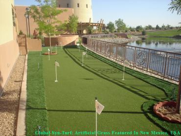 Artificial Turf Cost Warren Park, Indiana Backyard Putting Green, Backyard Landscaping Ideas artificial grass