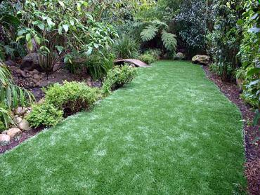 Artificial Grass Photos: Artificial Turf Fortville, Indiana Gardeners, Backyard Landscape Ideas