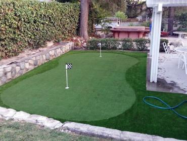 Artificial Grass Photos: Artificial Turf Gaston, Indiana Lawn And Garden, Backyard Makeover