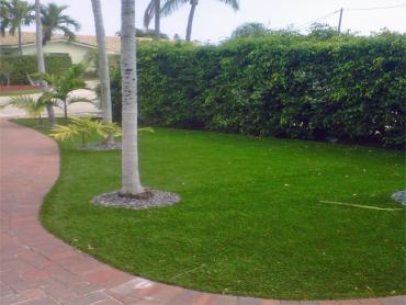 Artificial Grass Photos: Artificial Turf Installation Linton, Indiana Gardeners, Front Yard Landscaping Ideas