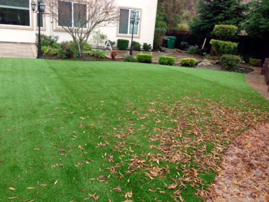 Artificial Grass Photos: Artificial Turf Installation Monticello, Indiana Landscape Design, Backyard Garden Ideas