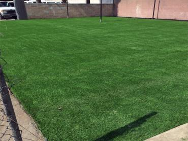 Artificial Grass Photos: Artificial Turf Installation Vincennes, Indiana Eco Friendly Products