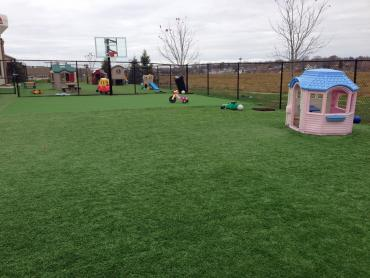 Artificial Grass Photos: Artificial Turf Installation West College Corner, Indiana Landscaping, Commercial Landscape