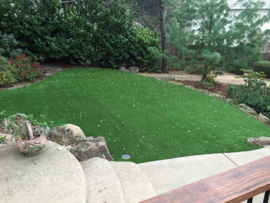 Artificial Grass Photos: Fake Grass Carpet Greencastle, Indiana Roof Top, Backyards