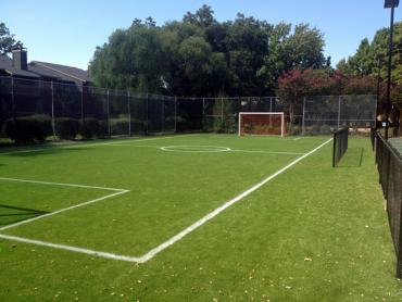 Artificial Grass Photos: Fake Grass Carpet Mulberry, Indiana Backyard Soccer, Commercial Landscape