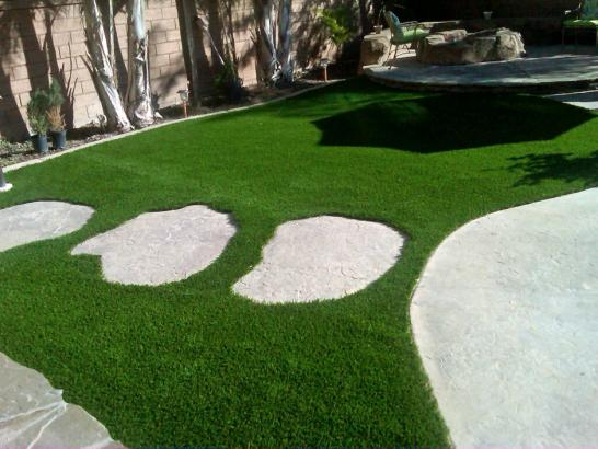 Artificial Grass Photos: Fake Grass Carpet New Salisbury, Indiana Gardeners, Backyard Designs