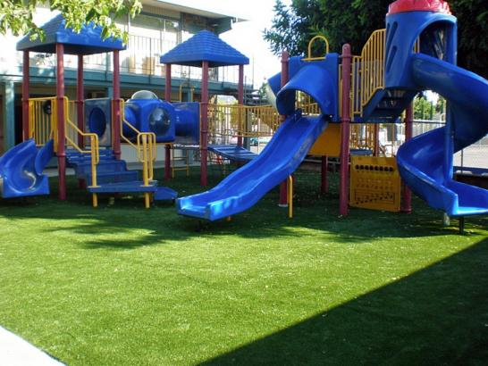 Artificial Grass Photos: Fake Grass Fort Wayne, Indiana Home And Garden, Commercial Landscape