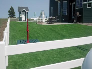 Fake Grass Milltown, Indiana Landscaping Business, Front Yard Ideas artificial grass