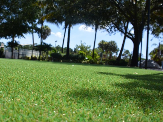 Artificial Grass Photos: Fake Lawn Muncie, Indiana Gardeners, Recreational Areas