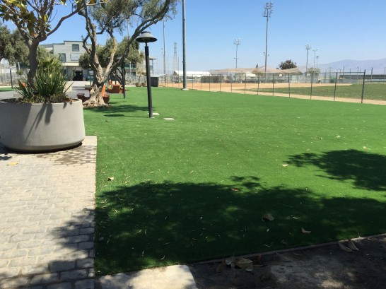 Artificial Grass Photos: Fake Lawn Oldenburg, Indiana Lawns, Parks