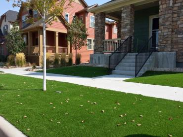 Artificial Grass Photos: Faux Grass Bargersville, Indiana Landscape Rock, Small Front Yard Landscaping