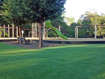 Artificial Grass Photos: Grass Installation Bloomfield, Indiana Backyard Deck Ideas, Parks