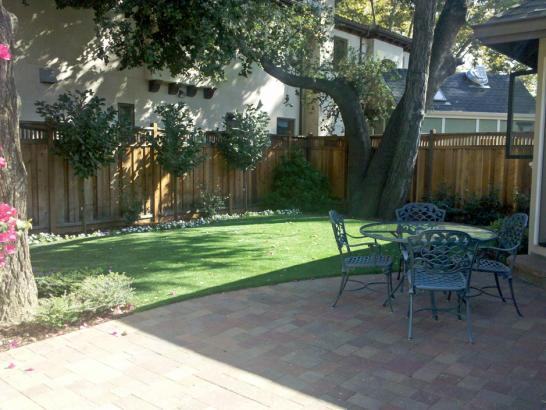 Artificial Grass Photos: Green Lawn Portland, Indiana, Backyard Landscaping Ideas