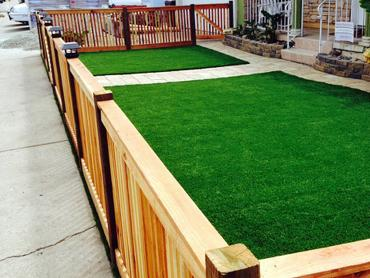 Artificial Grass Photos: How To Install Artificial Grass Bargersville, Indiana Landscape Design, Small Front Yard Landscaping