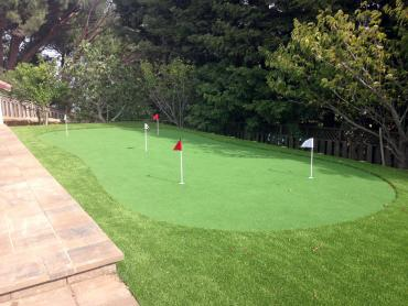 Artificial Grass Photos: Lawn Services Crawfordsville, Indiana Best Indoor Putting Green, Backyard Landscaping Ideas