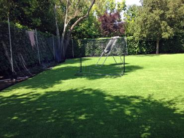 Artificial Grass Photos: Plastic Grass Culver, Indiana Stadium, Backyard Designs