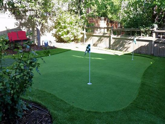 Artificial Grass Photos: Plastic Grass Pittsboro, Indiana Putting Greens, Backyard Landscaping