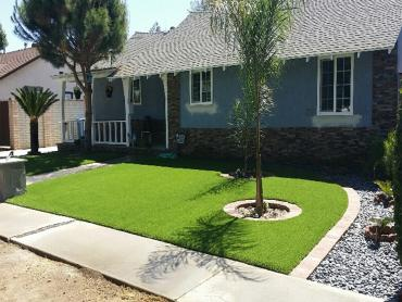 Artificial Grass Photos: Synthetic Grass Cost Arcadia, Indiana Backyard Playground, Front Yard Design