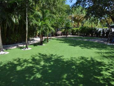 Artificial Grass Photos: Synthetic Grass Cost Marion, Indiana Landscape Photos, Commercial Landscape
