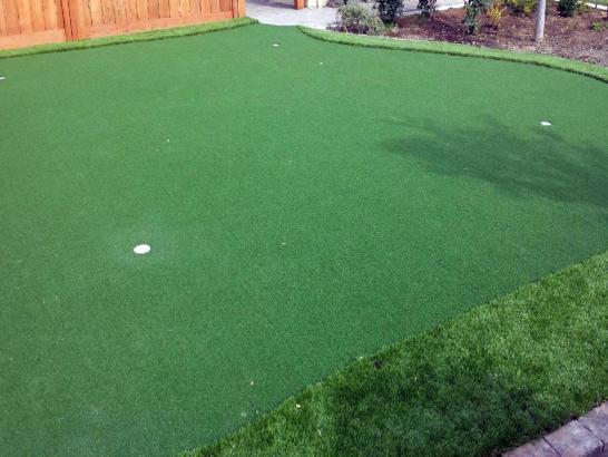 Artificial Grass Photos: Synthetic Grass Cost North Terre Haute, Indiana Paver Patio