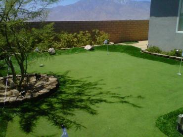 Artificial Grass Photos: Synthetic Grass New Albany, Indiana Indoor Putting Greens, Backyard Landscaping
