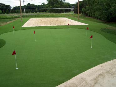 Artificial Grass Photos: Synthetic Lawn Shadeland, Indiana Garden Ideas, Backyard Designs