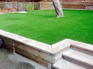Artificial Grass Photos: Synthetic Lawn Whitestown, Indiana Landscaping Business, Backyard Landscaping