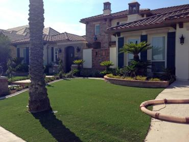 Artificial Grass Photos: Synthetic Turf Osgood, Indiana Garden Ideas, Front Yard Landscape Ideas