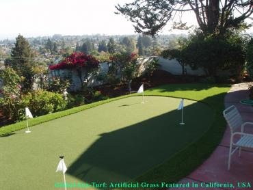 Artificial Grass Photos: Synthetic Turf Supplier Cumberland, Indiana Landscaping, Backyard Ideas
