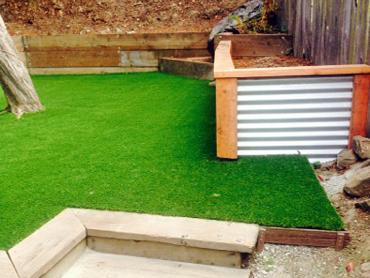 Artificial Grass Photos: Synthetic Turf Supplier Rocky Ripple, Indiana Landscaping Business, Backyard Designs
