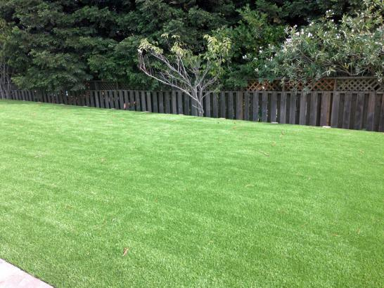 Turf Grass Hagerstown, Indiana Garden Ideas, Backyard Ideas artificial grass