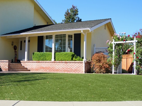 Turf Grass Knightstown, Indiana Lawn And Garden, Front Yard Landscaping artificial grass