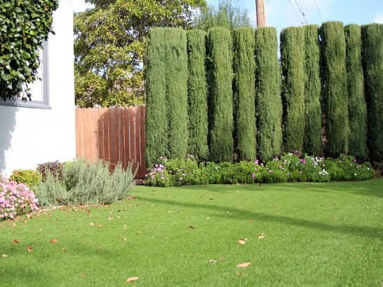 Artificial Grass Photos: Turf Grass Plymouth, Indiana Rooftop, Small Front Yard Landscaping