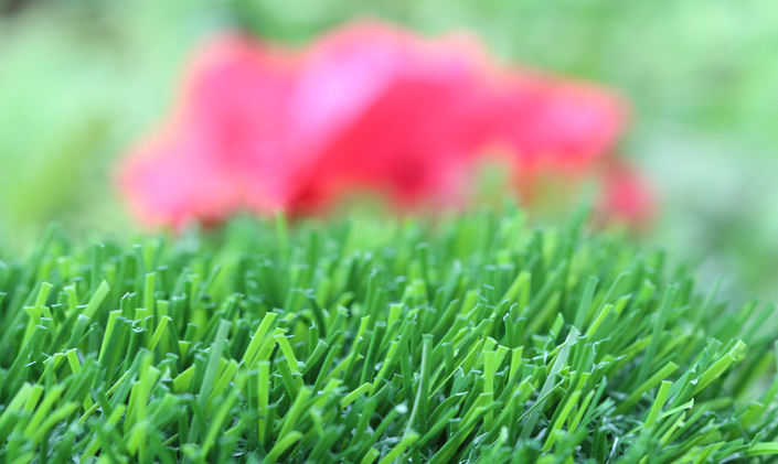 Artificial Grass Evergreen-80 Artificial Grass Indianapolis, Indiana