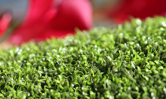 Artificial Grass Pro Putt-44 Artificial Grass Indianapolis, Indiana